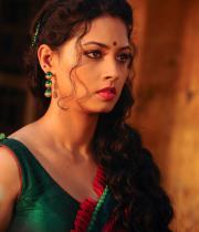 pooja-hot-saree-photos-9