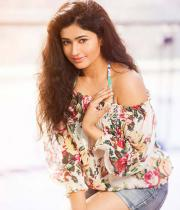 poonam-bajwa-hot-photo-shoot-stills-06
