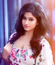 poonam-bajwa-hot-photo-shoot-stills-12