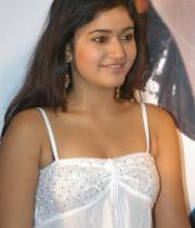 poonam-bajwa-hot-photo-shoot-stills-11