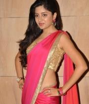 poonam-kaur-saree-stills-at-amb-audio-launch-1