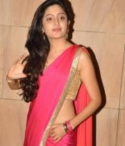poonam-kaur-saree-stills-at-amb-audio-launch-11