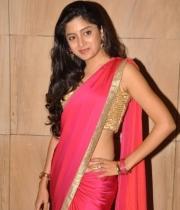 poonam-kaur-saree-stills-at-amb-audio-launch-12