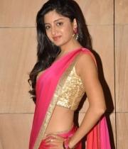 poonam-kaur-saree-stills-at-amb-audio-launch-13