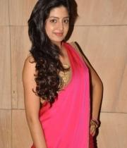 poonam-kaur-saree-stills-at-amb-audio-launch-14