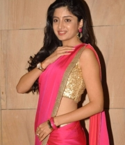 poonam-kaur-saree-stills-at-amb-audio-launch-15