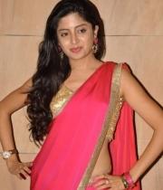 poonam-kaur-saree-stills-at-amb-audio-launch-16