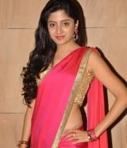 poonam-kaur-saree-stills-at-amb-audio-launch-3