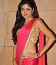 poonam-kaur-saree-stills-at-amb-audio-launch-4