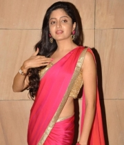poonam-kaur-saree-stills-at-amb-audio-launch-5