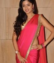 poonam-kaur-saree-stills-at-amb-audio-launch-7
