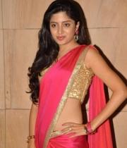 poonam-kaur-saree-stills-at-amb-audio-launch-8