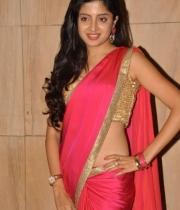 poonam-kaur-saree-stills-at-amb-audio-launch-9