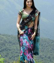 pranitha-latest-hot-photos-in-saree-03