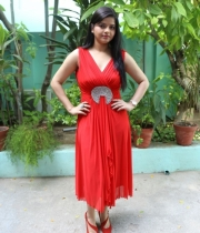 preethi-das-photo-stills-03