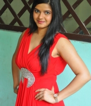 preethi-das-photo-stills-09
