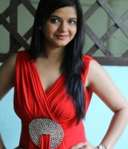 preethi-das-photo-stills-11
