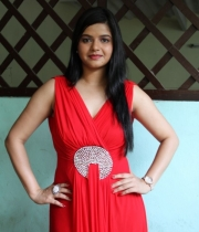 preethi-das-photo-stills-13