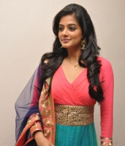 priyamani-at-chandi-movie-platinum-disc-1