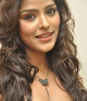 priyanka-chabra-hot-images-01
