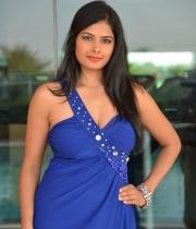 priyanka-shah-hot-photo-stills-at-kingfisher-fashion-week-event-42