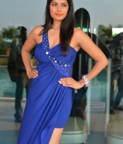 priyanka-shah-hot-photo-stills-at-kingfisher-fashion-week-event-65