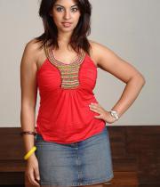 richa-gangopadhyay-hot-photosshoot-images-11