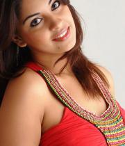 richa-gangopadhyay-hot-photosshoot-images-12