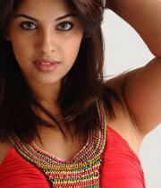 richa-gangopadhyay-hot-photosshoot-images-13