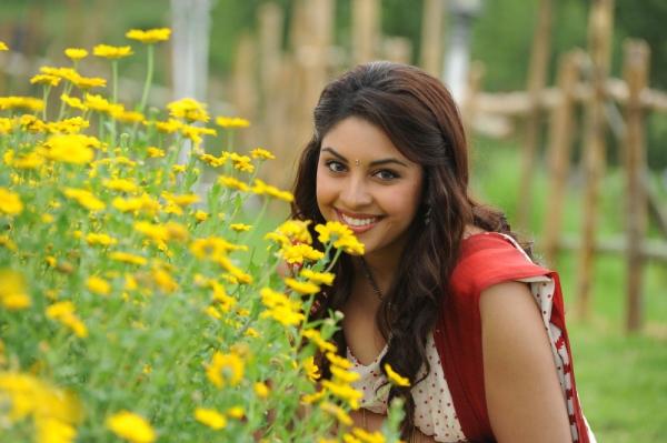 richa-gangopadhyaya-latest-stills-23