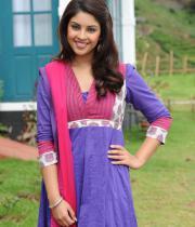 richa-gangopadhyaya-latest-stills-04