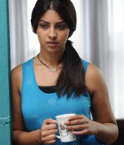 richa-gangopadhyaya-latest-stills-06