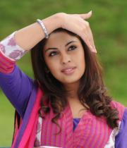 richa-gangopadhyaya-latest-stills-14