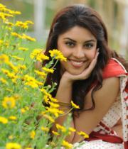 richa-gangopadhyaya-latest-stills-24