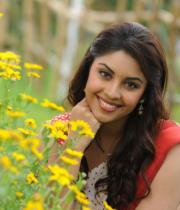 richa-gangopadhyaya-latest-stills-25