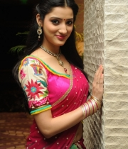 richa-panai-new-photo-stills-3