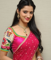 richa-panai-new-photo-stills-41