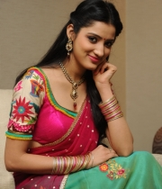 richa-panai-new-photo-stills-45