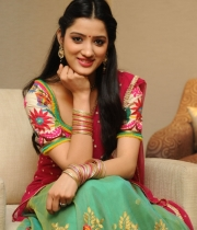richa-panai-new-photo-stills-54