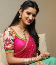 richa-panai-new-photo-stills-68