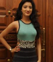 richa-panai-photos-at-mahesh-audio-launch-12