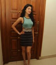 richa-panai-photos-at-mahesh-audio-launch-14