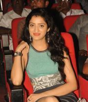 richa-panai-photos-at-mahesh-audio-launch-15