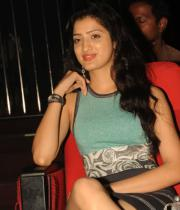 richa-panai-photos-at-mahesh-audio-launch-21