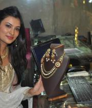 sayali-temple-jewellery-launch-stills-16