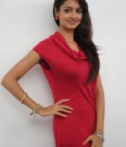 shanvi-photos-at-adda-press-meet-12