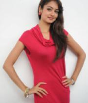 shanvi-photos-at-adda-press-meet-13