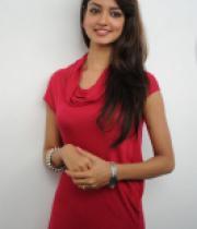 shanvi-photos-at-adda-press-meet-19