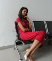 shanvi-photos-at-adda-press-meet-22