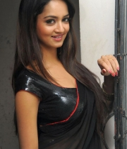 shanvi-hot-in-black-saree-photos-14